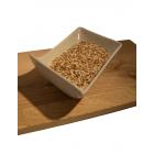 Mešanica semen