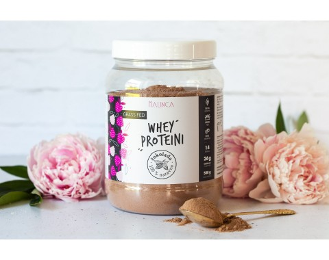 Protein (Eiweiß) Whey Schokolade