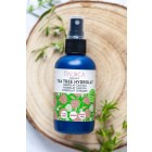 Hydrolat Teebaum aus ökologischem Landbau