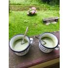 Matcha Latte aus ökologischem Landbau