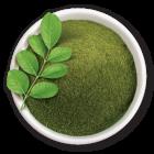 Moringa aus ökologischem Landbau