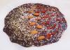 Domača čokolada