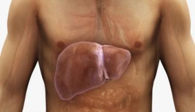 Zamaščenost jeter