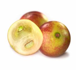 Camu camu bobice - bogat izvor vitamina C