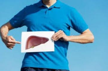 Funkcije in bolezni jeter ter kako jih preprečujemo
