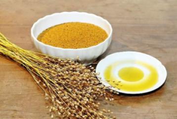 Totrovo/ričkovo olje in njegova uporaba