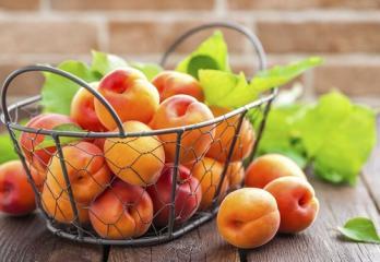 Marelice – žlahten sadež za dolgo in zdravo življenje