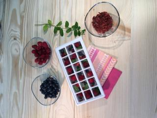 Frucht-Eiswürfel