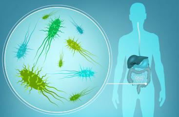 Was sind Probiotika