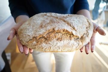 Pirin kruh brez gnetenja