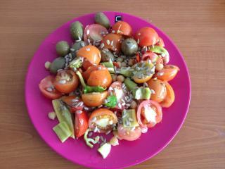 Šarena domaća salata