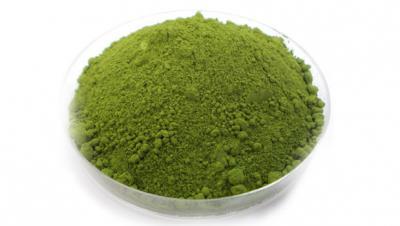 Chlorella - kraljica med algami