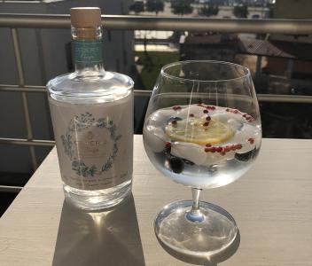 Brezalkoholni Gin Tonic