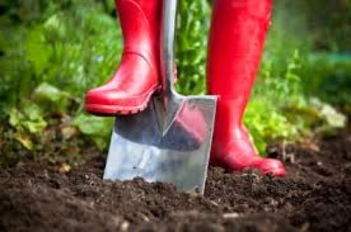 Jesenska priprema tla i organsko dognojavanje