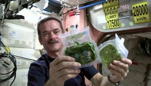 Spirulina - hrana astronavtov