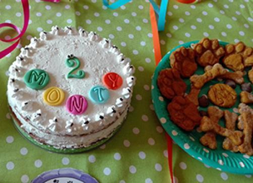 ZA PSIĆE: Torta od mrkve