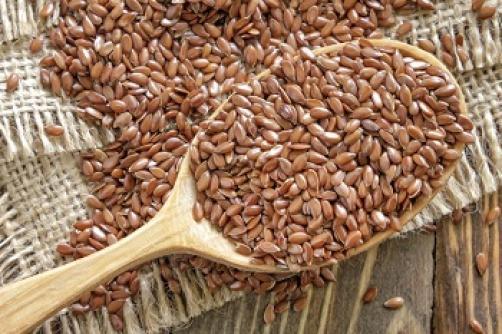 Laneno seme in uporaba lanenega semena