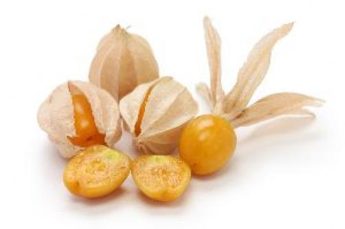 Zlate inkovske jagode