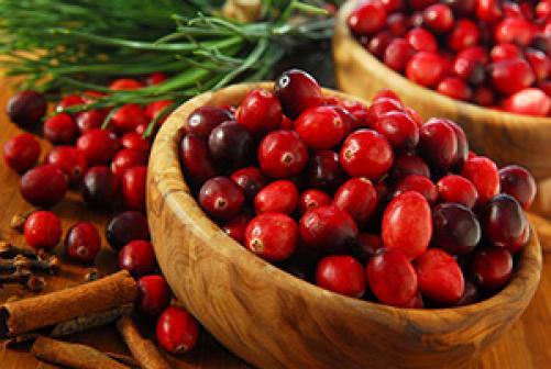 Zdrave in okusne brusnice