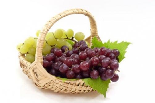 Grozdje - vitaminski sadež jeseni