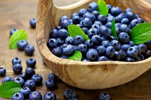 Heidelbeeren – Nahrung für Gedächtnis und Gesundheit