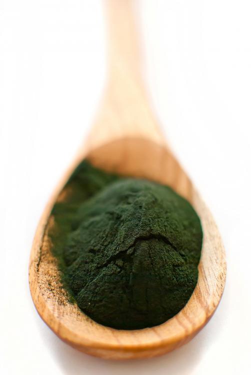 Je mogoče, da se zrediš ob uživanju alg?