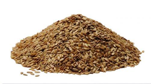 Za več zdravja uživajte laneno seme