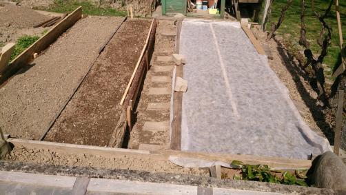 7 nasvetov: Vrtnarjenje za začetnike