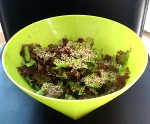 Zelena, rdeča solata, rukola in oluščena konopljina semena - kopija