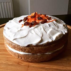 Nizkokalorična beljakovinska tortica s fižolom in korenčkom300x300