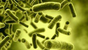 Toksini kaj so in kako se jim izognemo